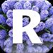 Download Путеводители и оффлайн карты 1.8 APK