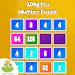 Download 2048 Pro : Number Puzzle  APK