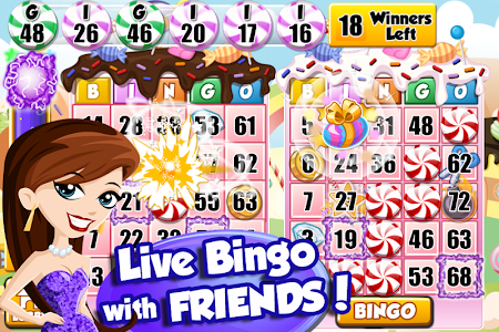 Download Bingo PartyLand 1.4.1 APK
