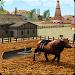 Download Bull Farming 1.4 APK