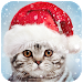 Download Christmas Photo Frames, Effects & Cards Art ? ?  APK