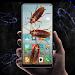 Download Cockroach in phone prank 4.0.8 APK