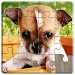 Download Dogs Jigsaw Puzzles Game - For Kids & Adults ? 18.2 APK