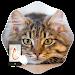 Download Gesture Lock Screen Cat 2.0.0 APK