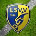 Download LSVV 2.0.53 APK