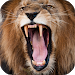 Download Lion Sounds 2.0 APK