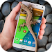 Download Lizard in phone funny joke 3.3 APK