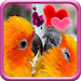 Download Love Birds Live Wallpaper 1.7 APK