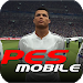 Download Evaluation Soccer Mobile 2017 2 APK