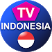 Download TV Indonesia Hemat Paket 1.1 APK