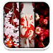 Download spring live wallpapers 1.1 APK